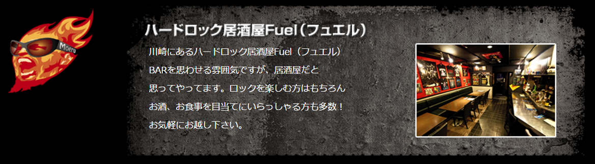 kawasaki_fuel